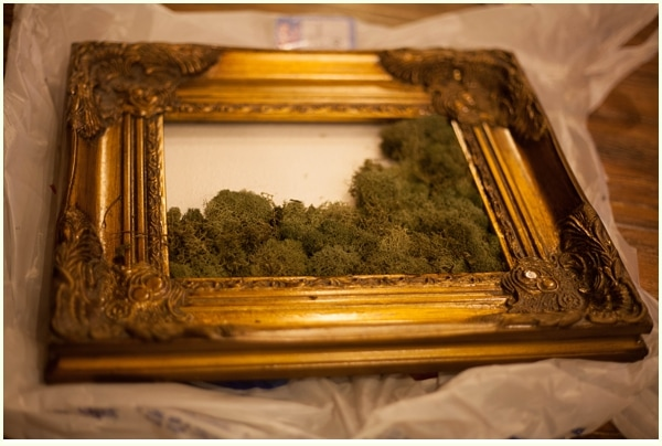make sure you tuck the moss underneath the frame so you dont see any white foam board peeking through