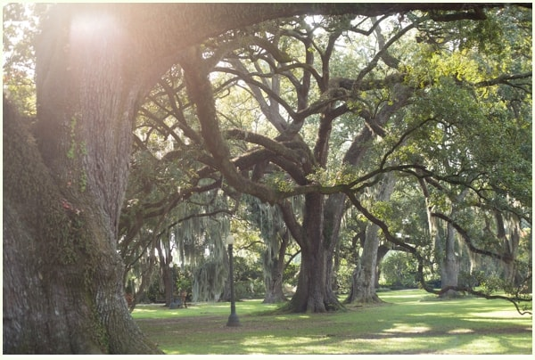 New Orleans_020