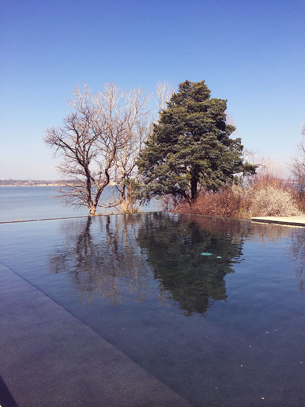 Reflection at Dallas Arboretum