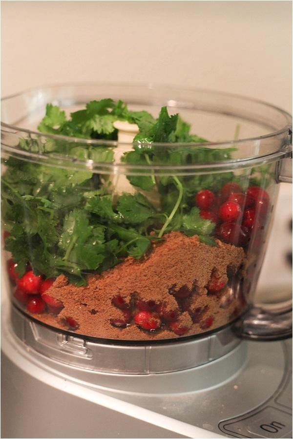 cranberry salsa_0004