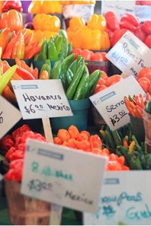 Dating Dallas: The Farmer's Market