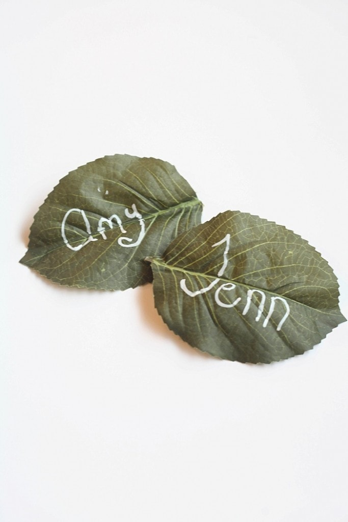 These easy DIY place cards take minutes to make, will elevate your table and make your guests feel welcome!_0014