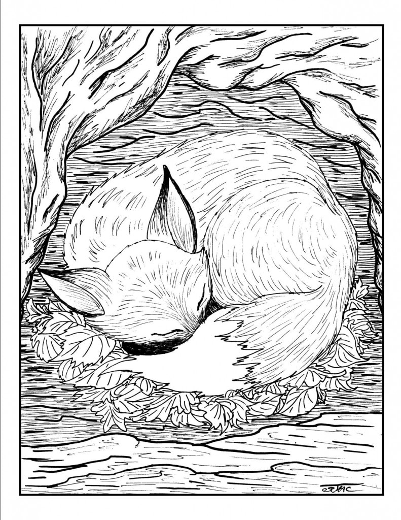 advanced-coloring-pages-fox