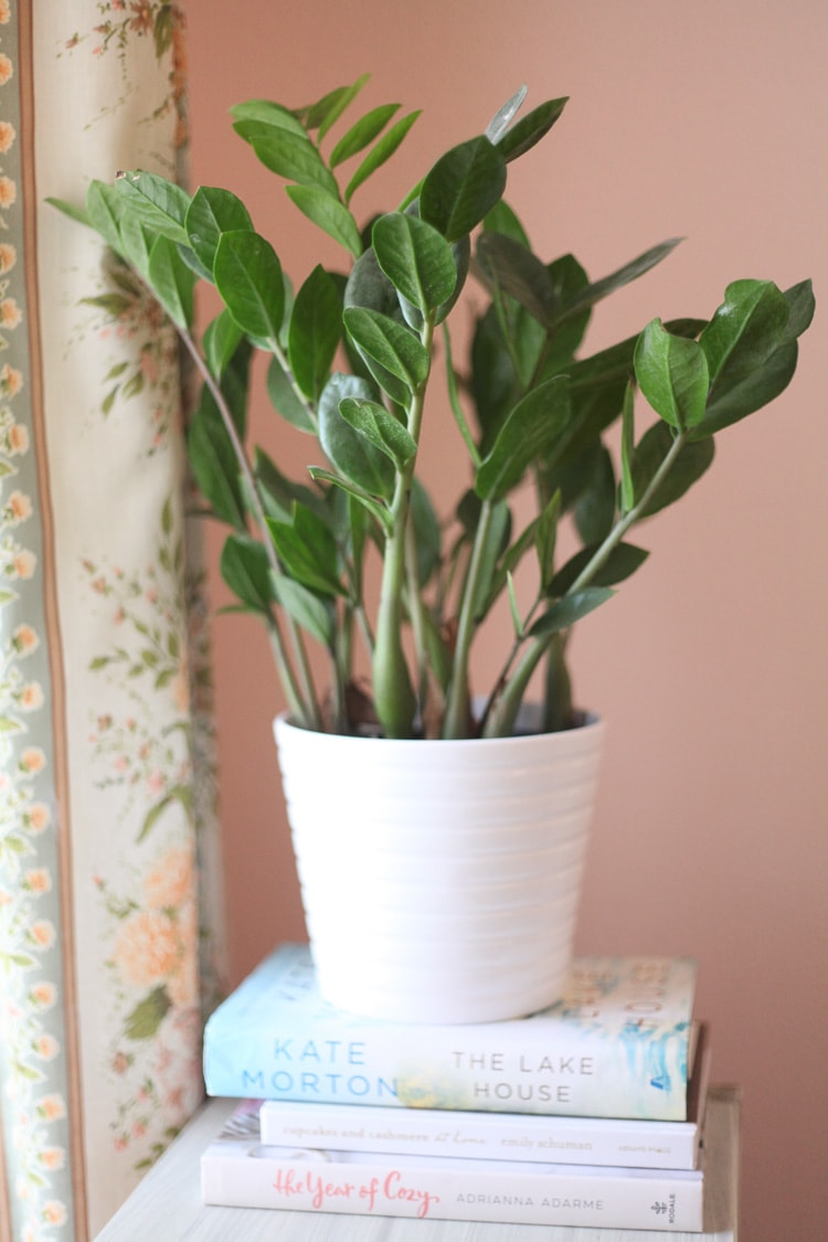 plants for bedroom / our new bedside tables / www.runtoradiance.com