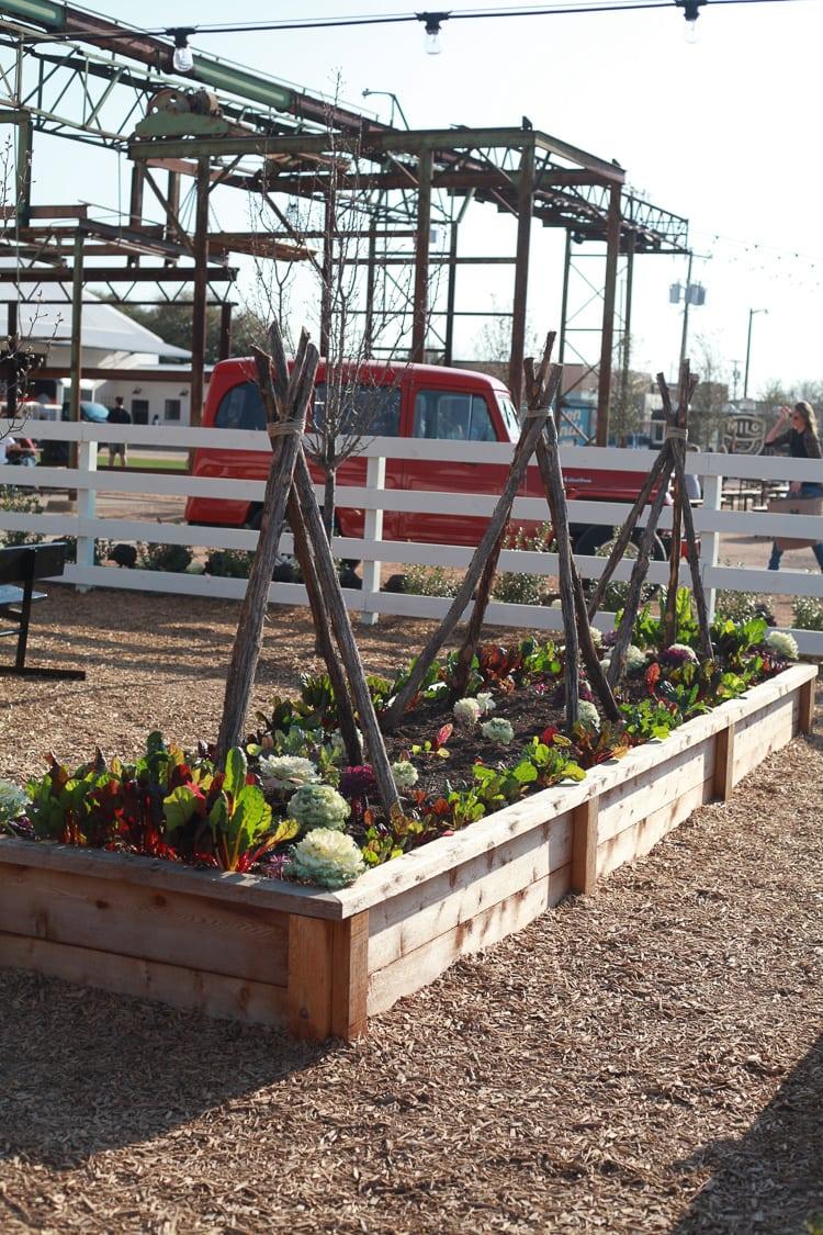 Fixer Upper farm at Magnolia market in Waco Texas