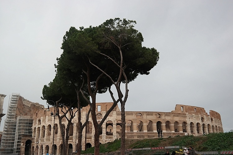 Rome, Italy travel guide! Everything you need to visit one of the greatest cities in the world.