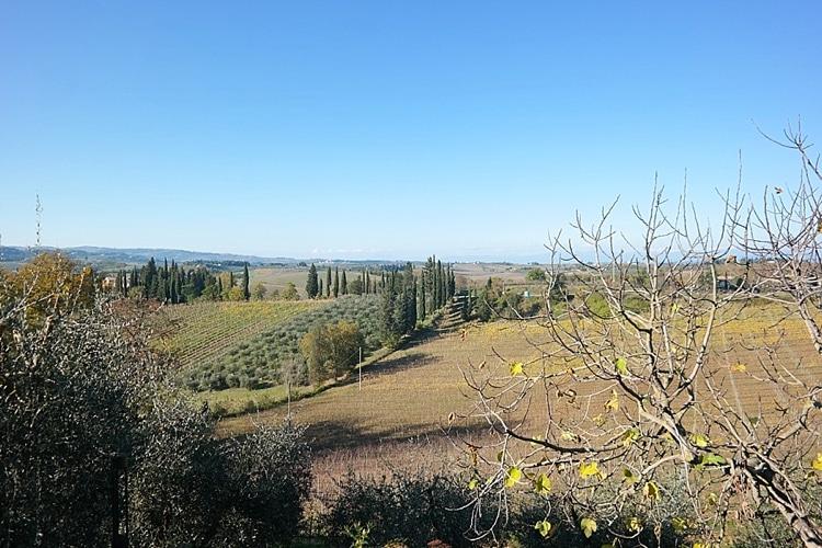 view of Tuscany, Italy