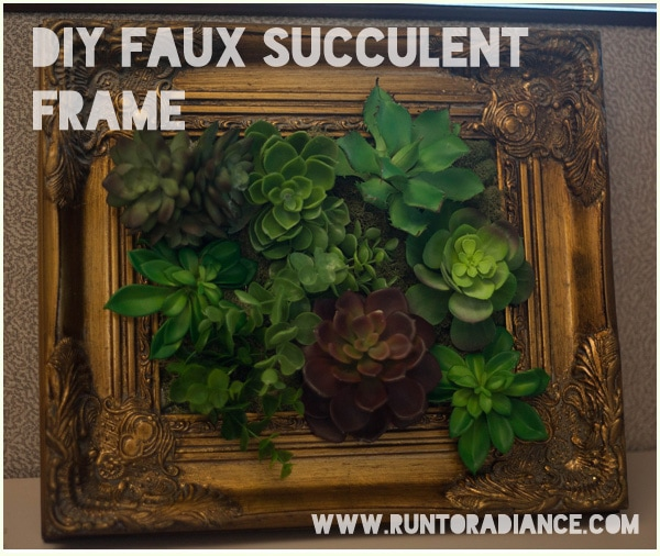 DIY Faux succulent framed display- smart!