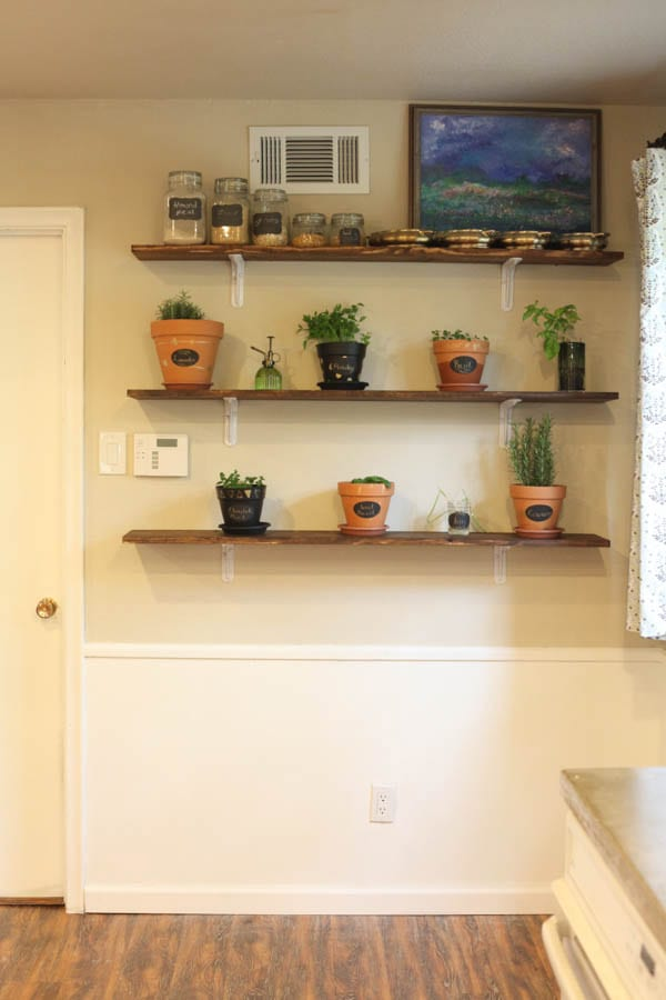 kitchen shelves with potted herbs