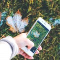 My favorite iphone apps for photography! As a professional photographer, I've spent forever searching - these ones are the very best and most are free!