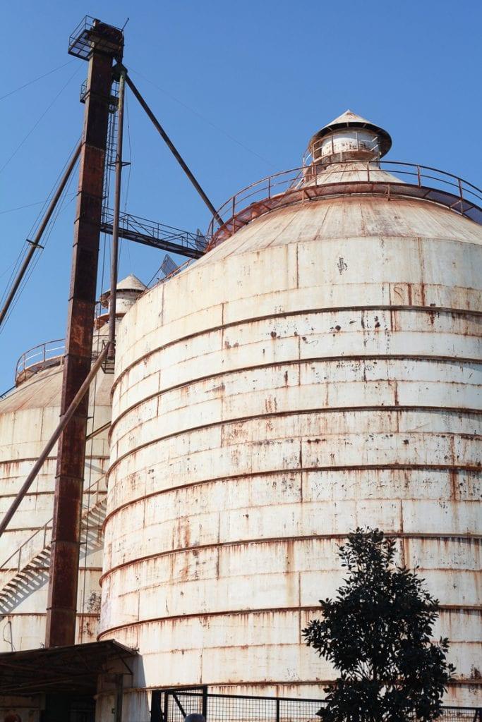 Fixer-Upper-farm-at-Magnolia-market-in-Waco-Texas-8-of-14