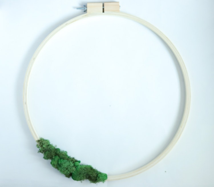 The first step to make an easter wreath - moss hot glued onto an embroidery hoop