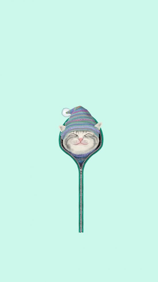 Cute wallpapers! This iphone background is a pastel mint and has a cat with zipper