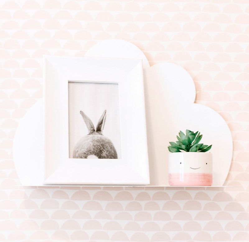 cloud shelf with bunny photo and plant